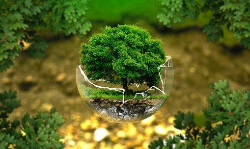 Etre écoresponsable c'est préserver la planète